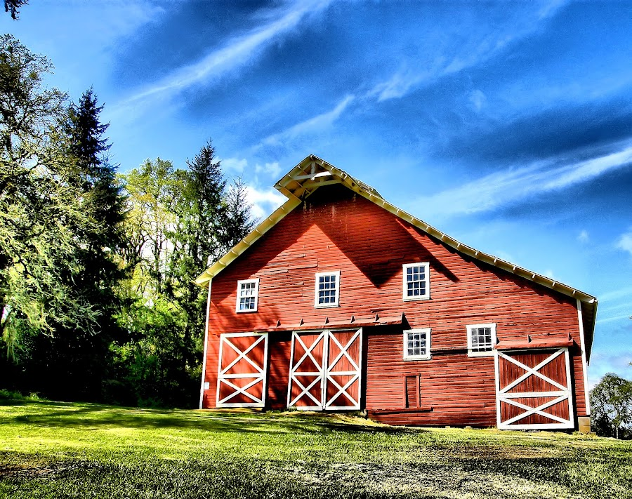 Finley Barn by Christy Sawyer - City,  Street & Park  Vistas ( oregon, red, barn )