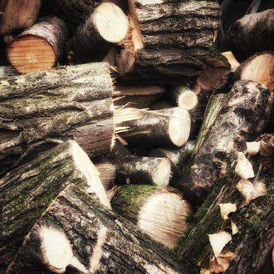 Wood di nickfor