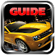 Guide for Horizon Chase World