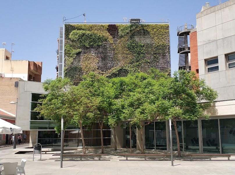 Jardín vertical en la actualidad