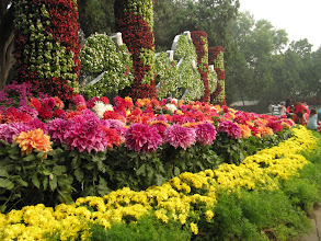 Photo: Day 190 -  Flower Bed  in Zhongshan Park