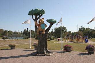 Photo: Pooh, der Bär, hier ist die Story entstanden