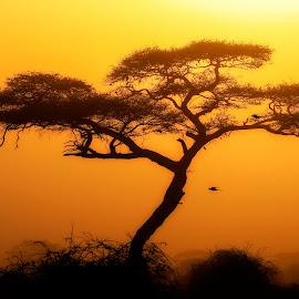by Christian Heitz - Landscapes Sunsets & Sunrises