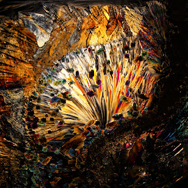 Gem Exposion by Scott Taft - Abstract Patterns ( microscope art, abstract art, microscopic art, abstract, microscopic )