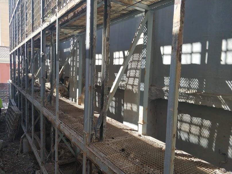 Quitando el trámex del jardín vertical de San Vicente
