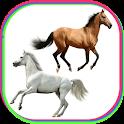 Horse Power Photo Frames icon