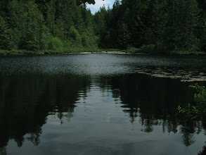Photo: Whyte lake