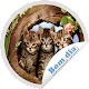 Figurinhas de Bom dia - WAStickerApps Download on Windows