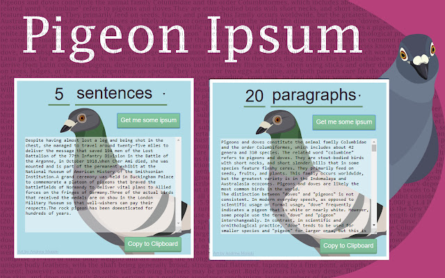 Pigeon Ipsum