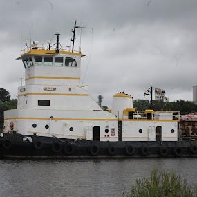 Tug Boat by Rohan Jackson - Transportation Boats ( water, boat )