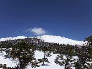 山頂方面を望む