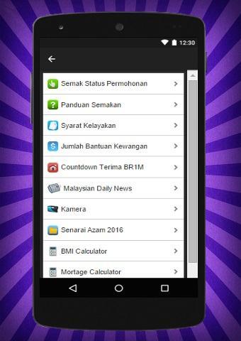 BR1M Semak Status 2016