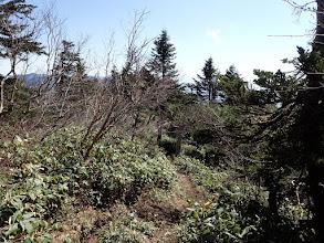 浦倉山へ向う