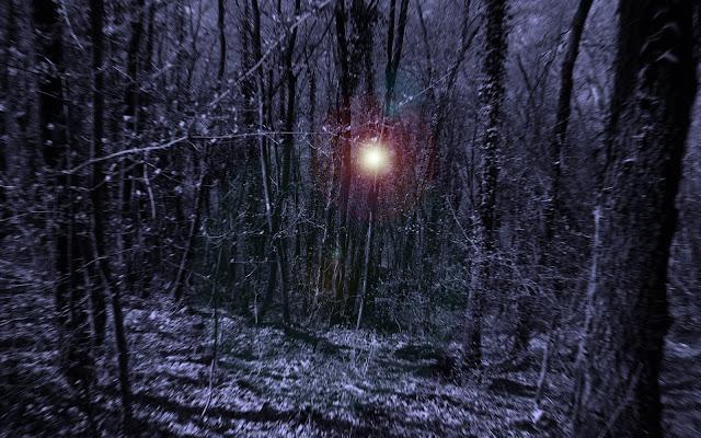 Foresta Incantata di silvergdb