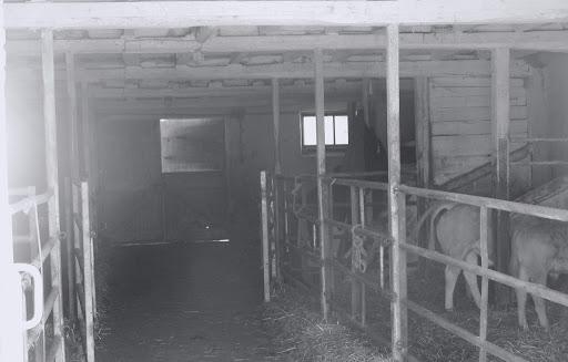 L'ancienne étable, vue intérieure