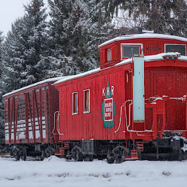 Olden Days Railway by Garry Dosa - Transportation Trains ( red, historic, railroad, outdoors, snow, vintage, winter, heritage, railway, travel, transportation, train,  )