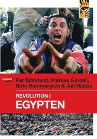 Revolution i Egypten E-bok
