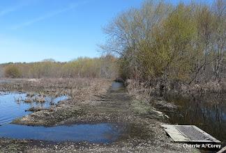 Photo: Dike Trail
