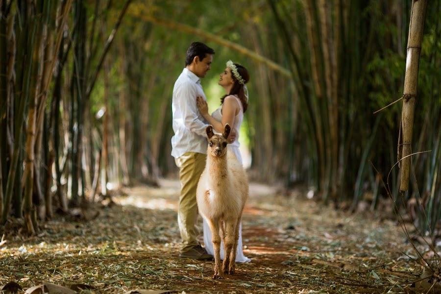 Fotógrafo de casamento Gilson Mendonça júnior (enlevo). Foto de 25.08.2017