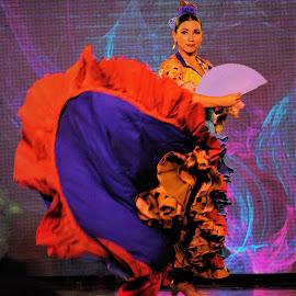 Flamenco by Tomasz Budziak - People Musicians & Entertainers ( entertainers, dancer, spain, dance )