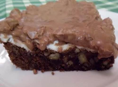 "Mississippi Mud Cake ""Easy to make, very rich and gooey."" - Vince"