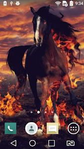 Horse at sunset live wallpaper screenshot 1