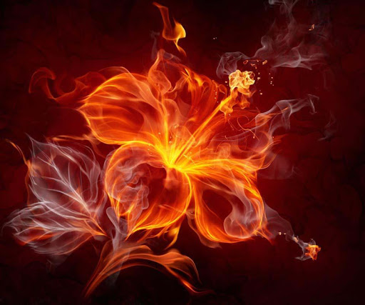 Flame Flower Jigsaw