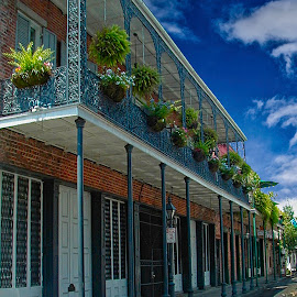 Street in the French Quarter by Joseph Vittek - Buildings & Architecture Other Exteriors