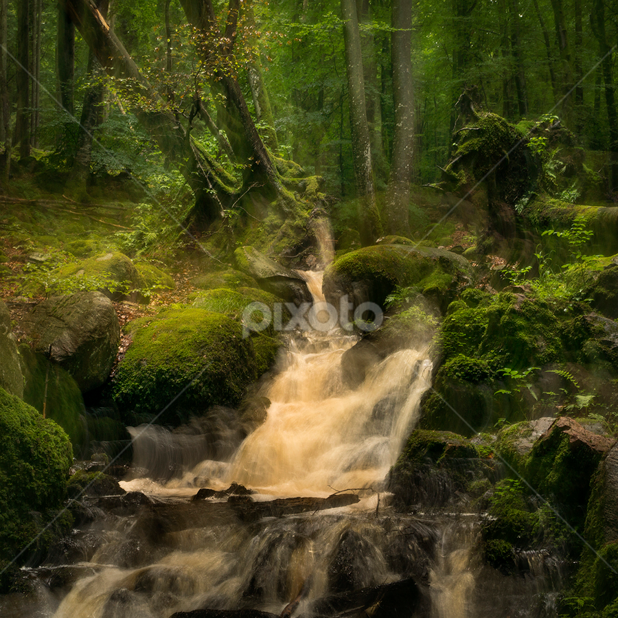 The little waterfall by Peter Samuelsson - Nature Up Close Water