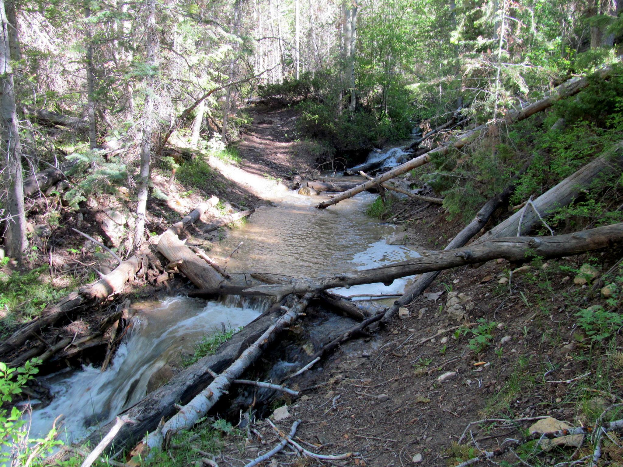Photo: First stream crossing
