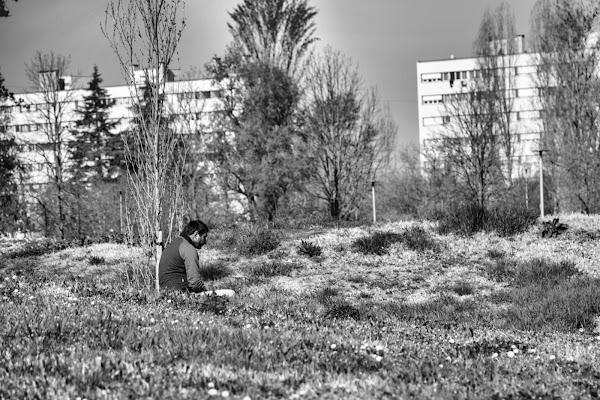Silenzi di periferia di Wolfman