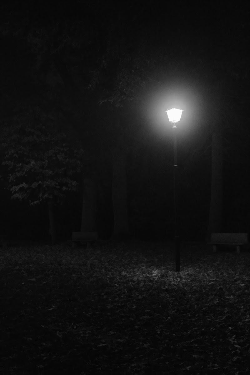 Soli Nella Notte di MarcoFalugiani