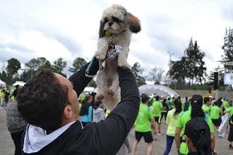 Photo: La mascota calienta y se prepara para correr