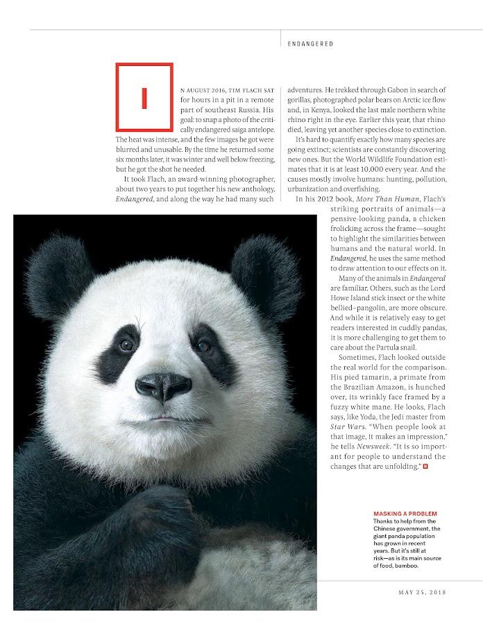Newsweek- ảnh chụp màn hình