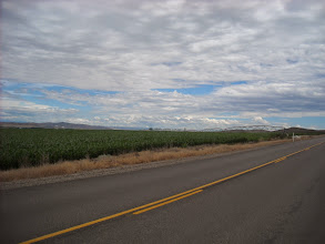 Photo: day 8 Baker OR to Fruitland ID Corn fields as far as you can see