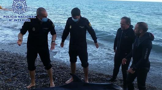 Rescatan a un delfín varado en la playa de las Olas de Almería