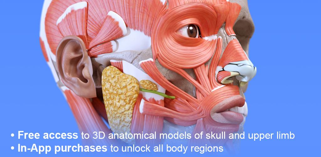 Anatomy 3D Atlas 2 0 0 Apk + OBB Download - com
