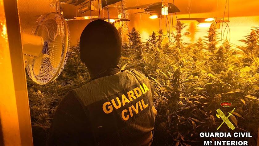 La Guardia Civil intervino diversos aparatos para maximizar el rendimiento de las plantaciones.