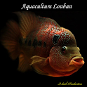 Aquaculture Louhan icon