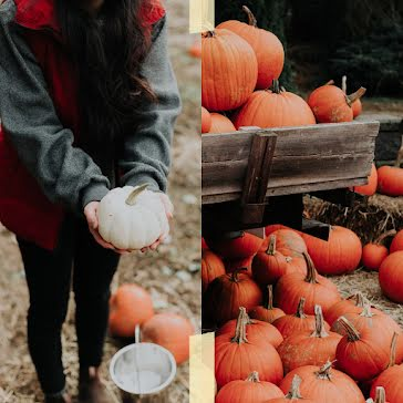 Halloween Pumpkins - Halloween Template