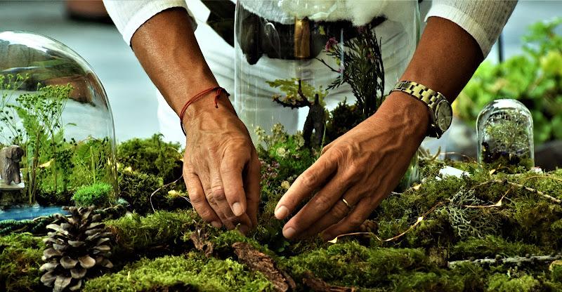 Mani, Terra, Arte di legrand