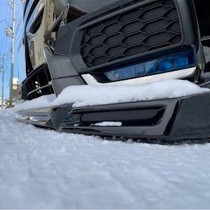 ステップワゴン RP3 SPADA・Cool Spirit Honda SENSING 30年式のカスタム事例画像 スーパー林道さんの2021年01月10日12:25の投稿