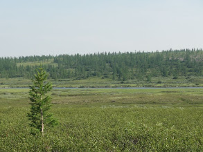Photo: Кажется, что река совсем рядом.