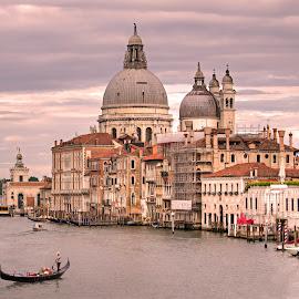 Grand Canal of Venice by Peter Kennett - City,  Street & Park  Vistas ( salute, water, gondola, church, grand canal, santa maria della salute, venice, basilia, boat, italy, canal )