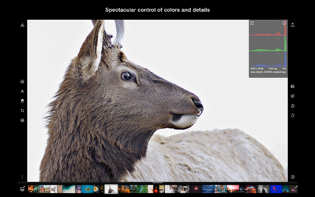 Polarr Photo Editor Extension