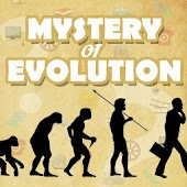 Mystery of Evolution