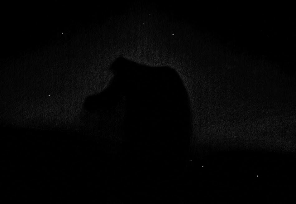 Photo: Nébuleuse de la Tête de Cheval (B33) au T1m de Stellarzac (février 2017). 265X et filtre H bêta.