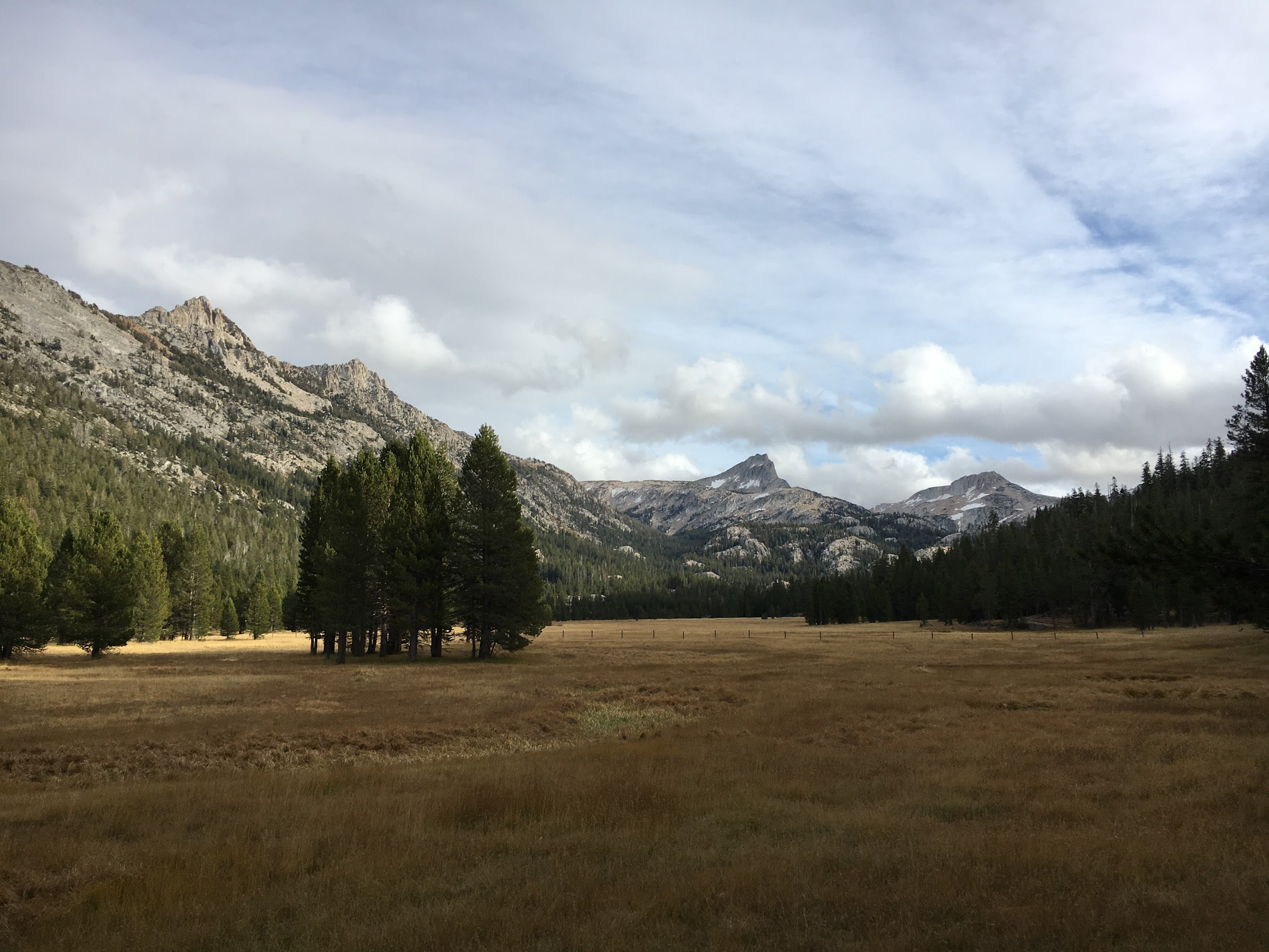 View south from Upper Piute Meadow