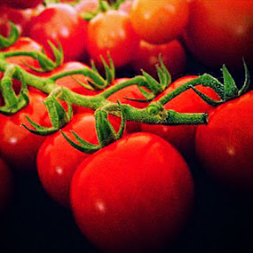 Still Life with Tomatoes by Teddy Tavares - Food & Drink Fruits & Vegetables ( pwcvegetables )