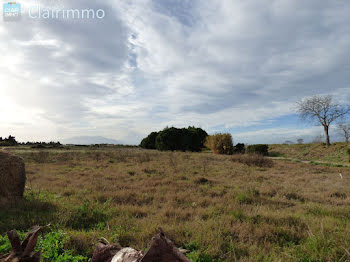 terrain à Torreilles (66)
